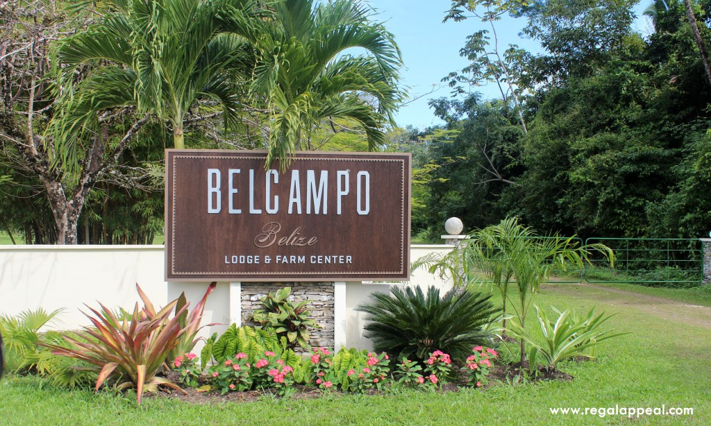Belcampo_Belize_7